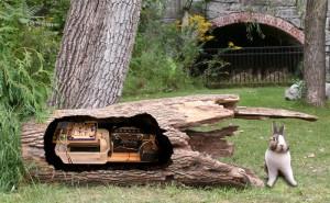 TreeWhispersRosendaleWeb